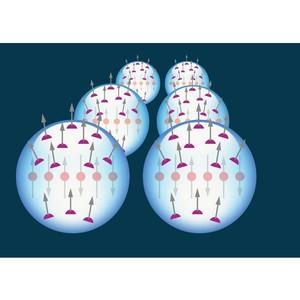 Магнитные наночастицы бактериального происхождения способны адресно доставлять лекарства в организме