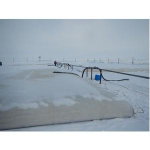 Кто будет добывать нефть в Антарктиде?
