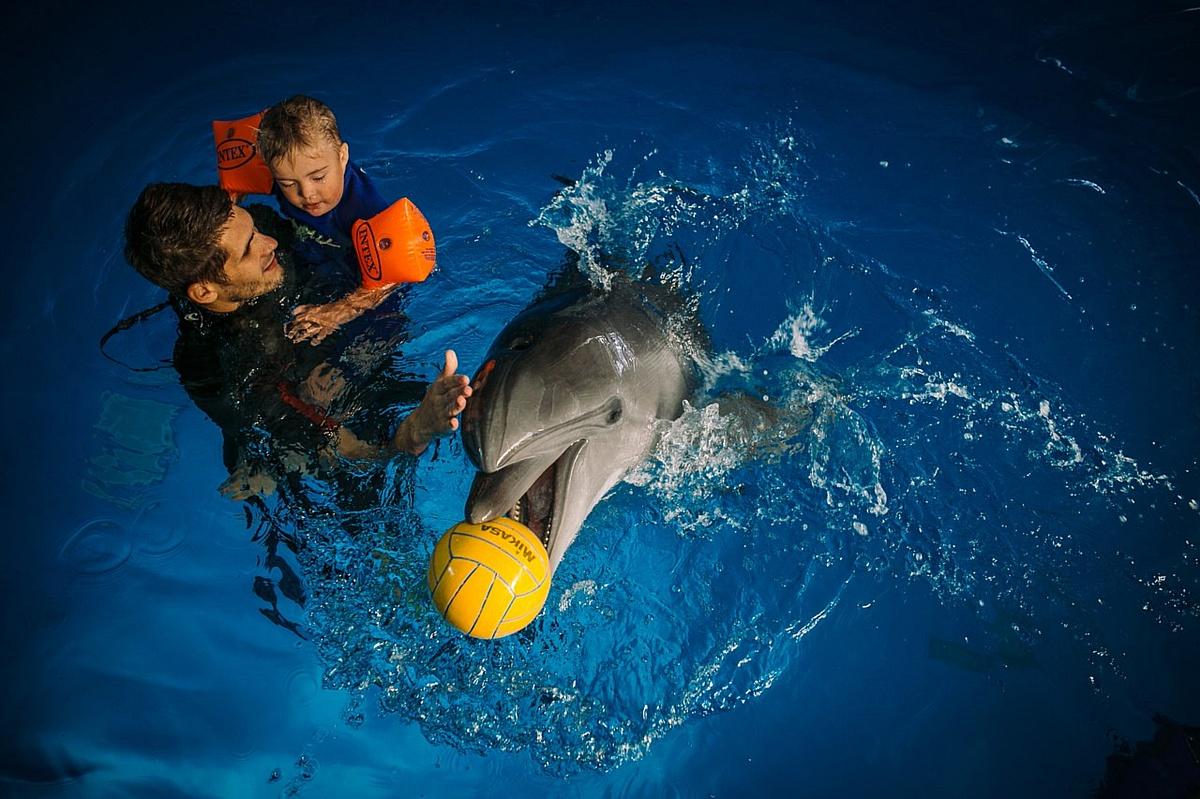 Дельфинарий «Немо» в Анапе.