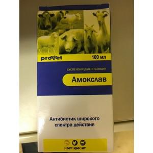 Россельхознадзор выявил контрафактный лекарственный препарат для ветприменения «Амокслав»