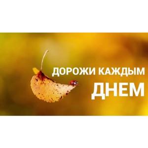 Мнение эксперта КФУ: