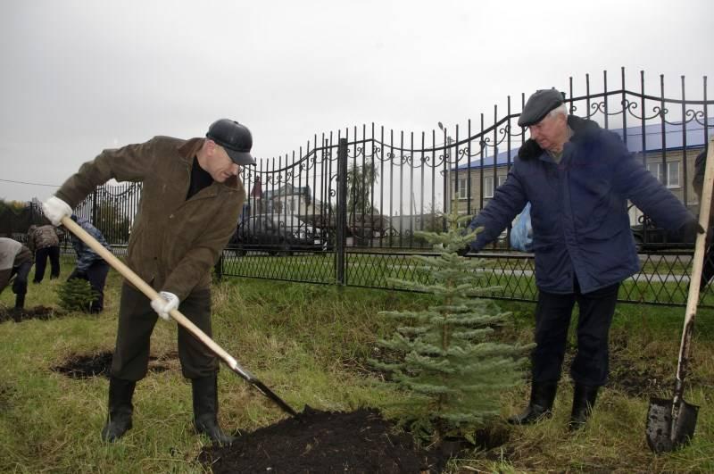 Чувашская энергосбытовая компания помогла создать парк в Батыревском районе