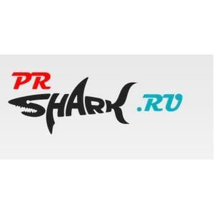 Регистрация в каталогах с Prshark – польза для вашего интернет-проекта