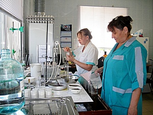 В Волгоградской области за январь сертифицировано 184 тонны семян